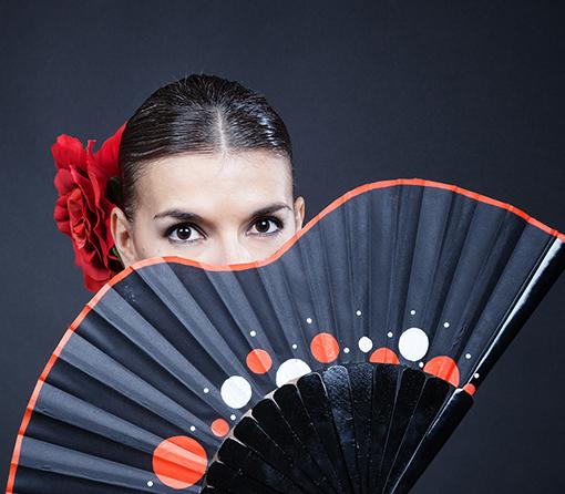 Book fotos flamenco