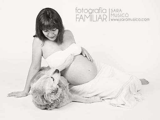 fotos-de-embarazada-en-estudio-book-premama-con-mascota-0032bn