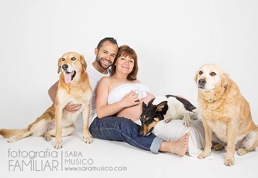 fotos-de-embarazada-en-estudio-book-premama-con-mascota-0055