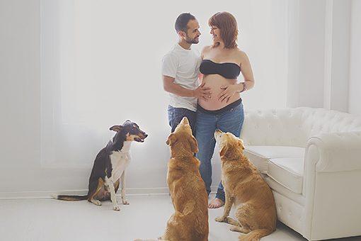 fotos-de-embarazada-en-estudio-book-premama-con-mascota-0071paraweb