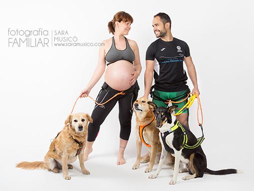 fotos-de-embarazada-en-estudio-book-premama-con-mascota-0096