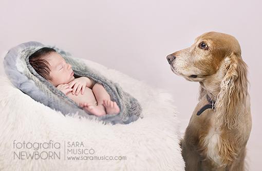 sesiones-de-recien-nacido-newborn-estudio-de-fotografia-madrid-sara-musico-fotografia-0005