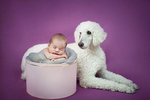 book-de-fotos-bebes-recien-nacidos-fotografo-recien-nacidos-madrid4P9A8778parablog