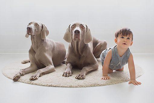 FOTÓGRAFO EN COLLADO VILLALBA - BOOK INFANTIL Y FAMILIAR