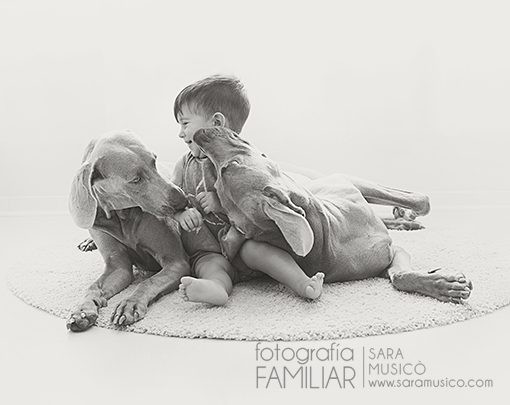 fotografo-en-collado-villalba-book-infantil-y-familiar-0087bn
