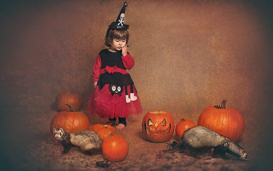 sesion-fotos-halloween-book-madrid-2-sara-musico-fotografia