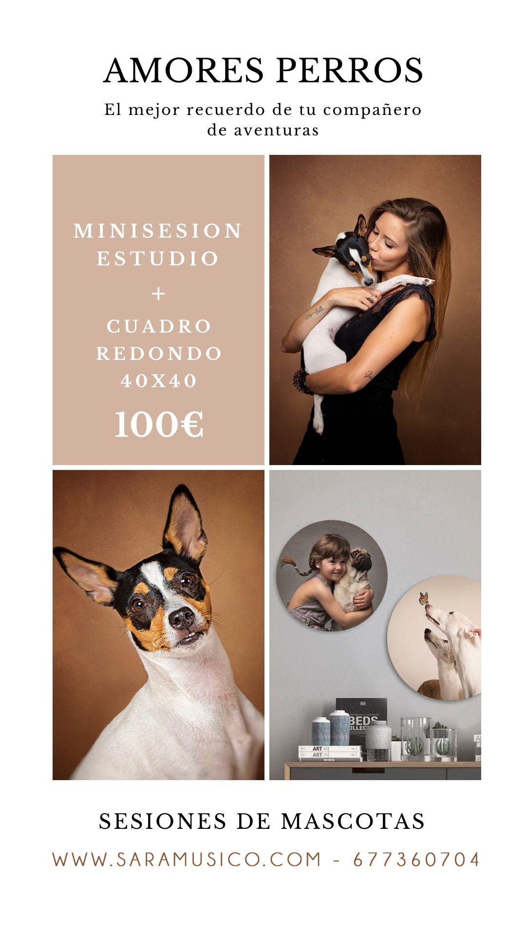 Promocion Book de mascotas